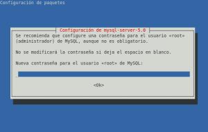 Petición de contraseña durante la instalación de MySQL