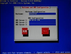 Escribimos el nombre del servidor y los DNS