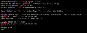 Entramos en MySQL y reiniciamos la contraseña