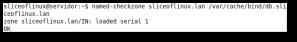 Ejecución de named-checkzone sin errores