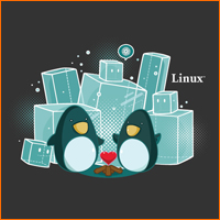 Two Linux Penguins Sharing an Iceberg
