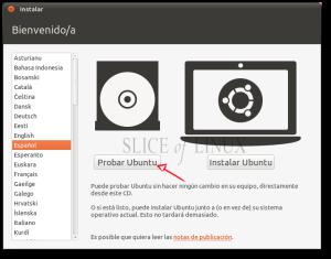 Seleccionamos nuestro idioma y pulsamos sobre Probar Ubuntu